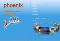 Phoenix Project Management Services